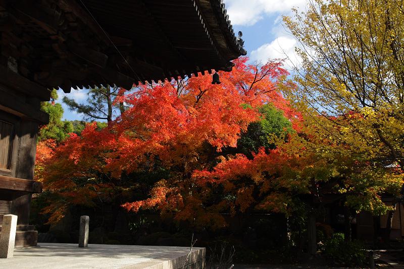 Yasaka0812103