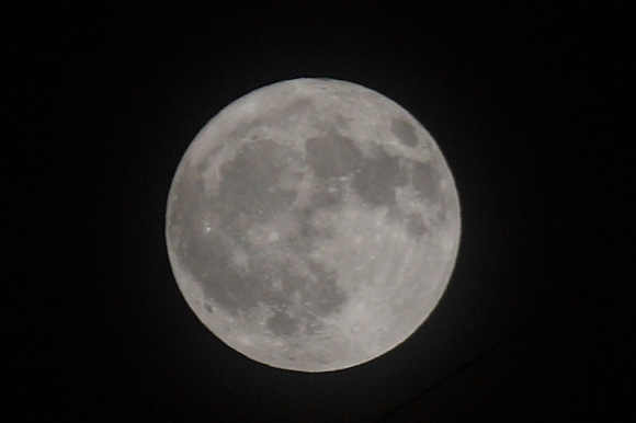 Bluemoon0706301