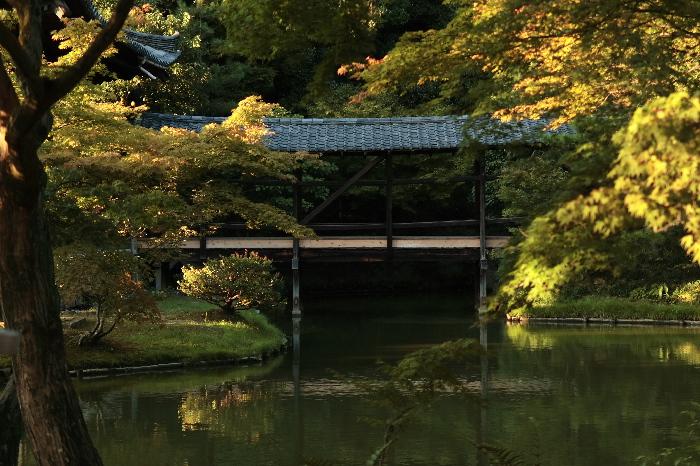 Koudaiji0610018