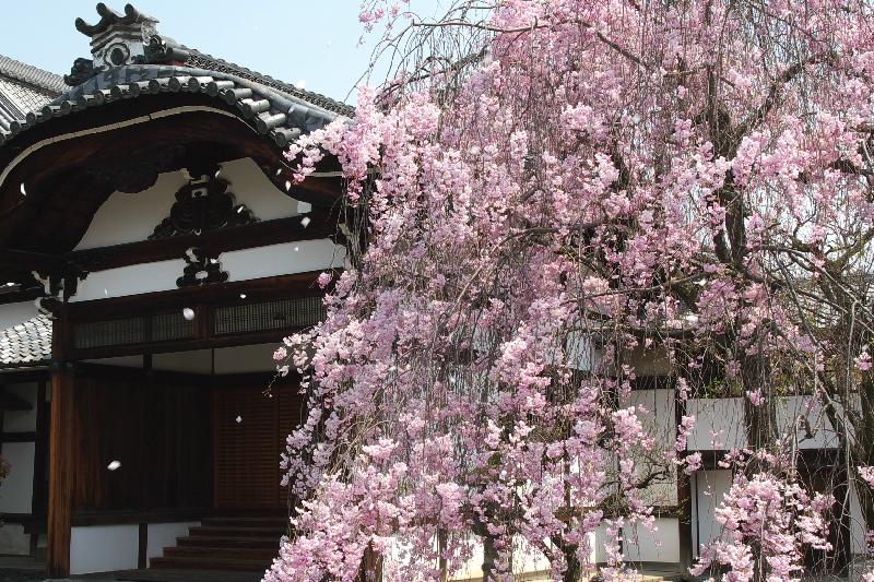 Myoukenji0704131