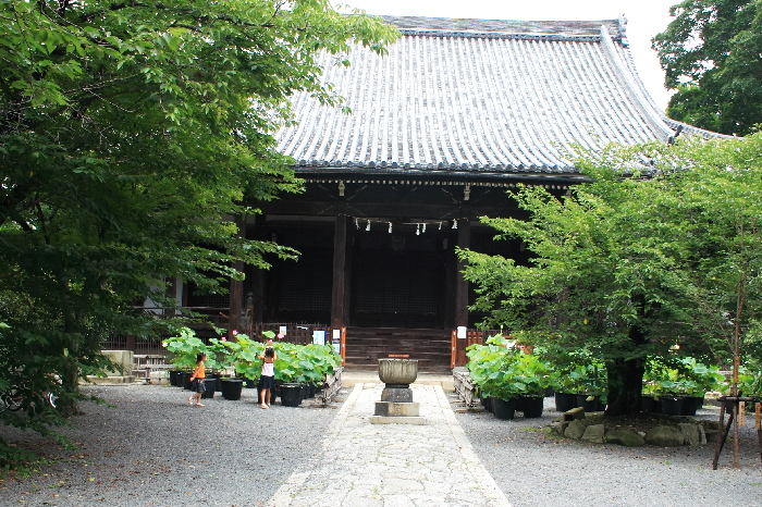 Ryuhonji0607265