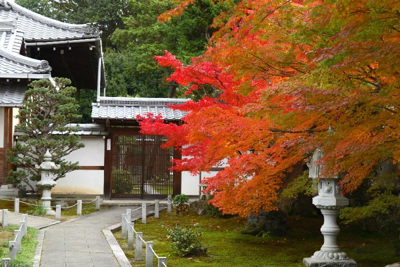 Toufukuji0612075
